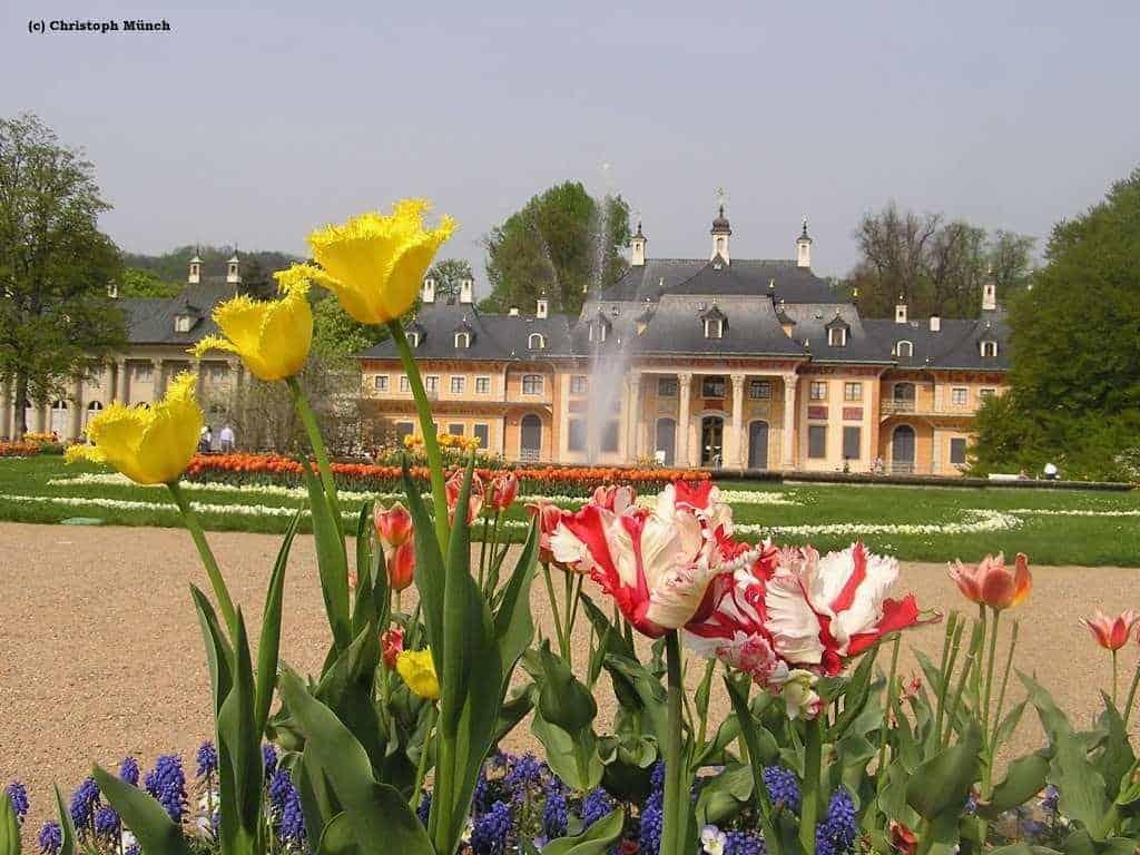 Schloss Pillnitz - Sommerresidenz des Hofes